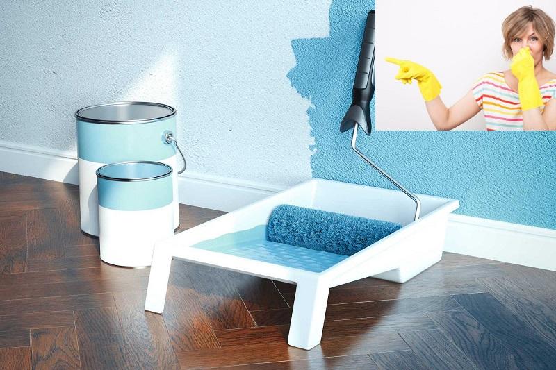 13 cách khử mùi sơn nhà mới hiệu quả an toàn